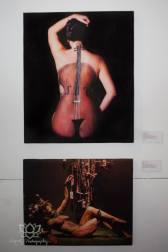 Daniella Koontz work - DKP